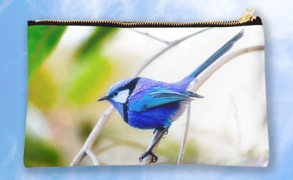 Blue Wren, Bushy Lakes Studio Pouch design by Dave Catley featuring a Blue Wren from Bushy Lakes in Margaret River available from our MADAboutWA store.