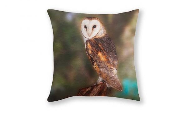 Chips The Barn Owl, Native Animal Rescue Cushion Cover, Designed by Dave Catley Fine Art Photographer, available in our MADAboutWA Store.