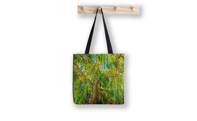 Colour of Life, Yanchep National Park Tote Bag designed by Dave Catley, Fine Art Photographer, available from our MADAboutWA Store.