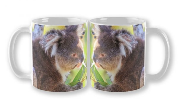 Feed Me, Yanchep National Park Mug design by Dave Catley featuring Koala snack time, love my gum leaves available from our MADAboutWA store.