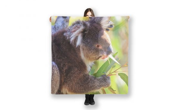 Feed Me, Yanchep National Park Scarves featuring a Koala from Yanchep National Park available from our MADCAT.RedBubble.com store.