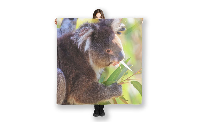 Feed Me, Yanchep National Park Scarf designed by Dave Catley, Fine Art Photograper, available from our MADAboutWA store.