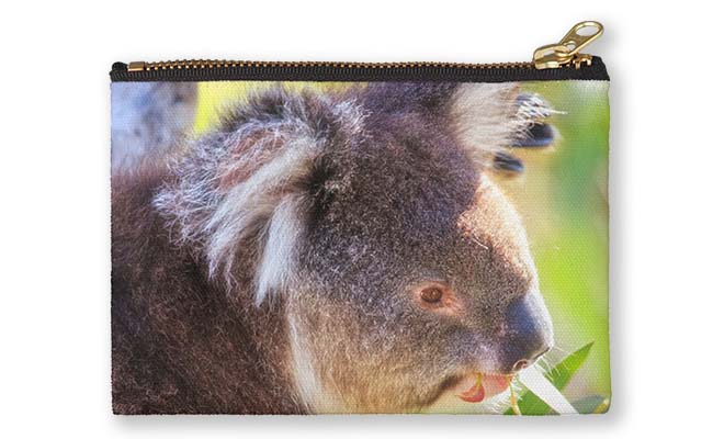 Feed Me, Yanchep National Park Studio Pouch design by Dave Catley featuring Koala snack time, love my gum leaves available from our MADAboutWA store.