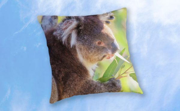Feed Me, Yanchep National Park Throw Pillow design by Dave Catley featuring Koala snack time, love my gum leaves available from our MADCAT.RedBubble.com store.