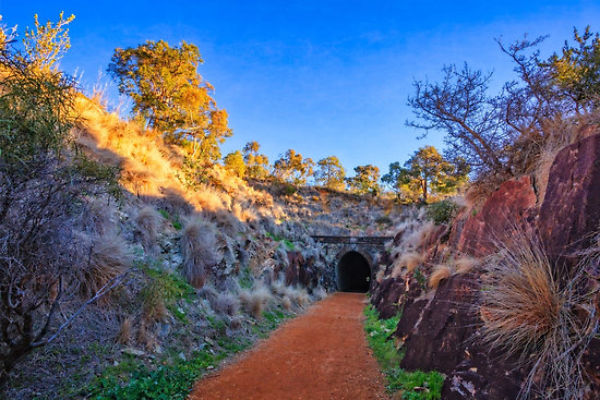 Swan View Railway Tunnel, John Forrest National Park