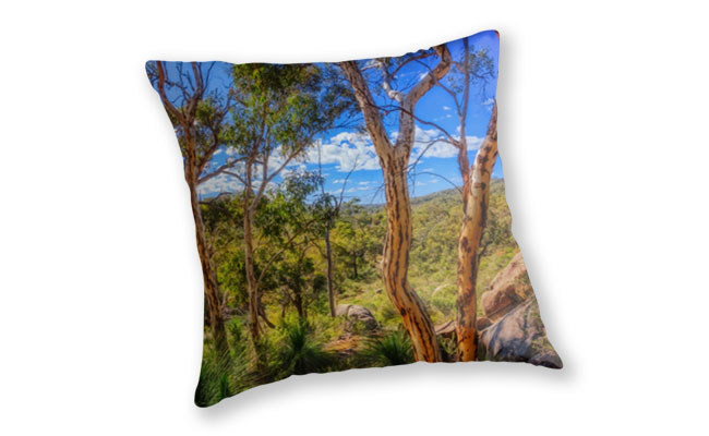 Heritage View, John Forest National Park Throw Pillow design by Dave Catley featuring View from the old railway line walk trail in John Forest National Park available from our MADCAT.RedBubble.com store.