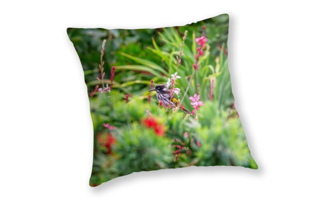 Honey Eater, Bushy Lakes Throw Pillow design by Dave Catley featuring A Honey Eater in Bushy Lakes, Margaret River available from our MADCAT.RedBubble.com store.