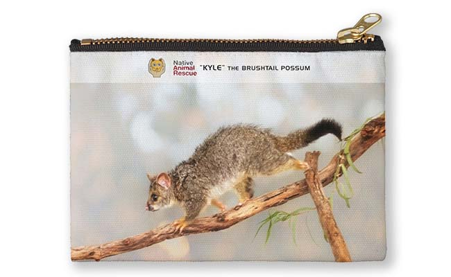 Kyle the Brushtail Possum, Native Animal Rescue Studio Pouch featuring Kyle the Brushtail Possum, Native Animal Rescue available from our MADCAT.RedBubble.com store.