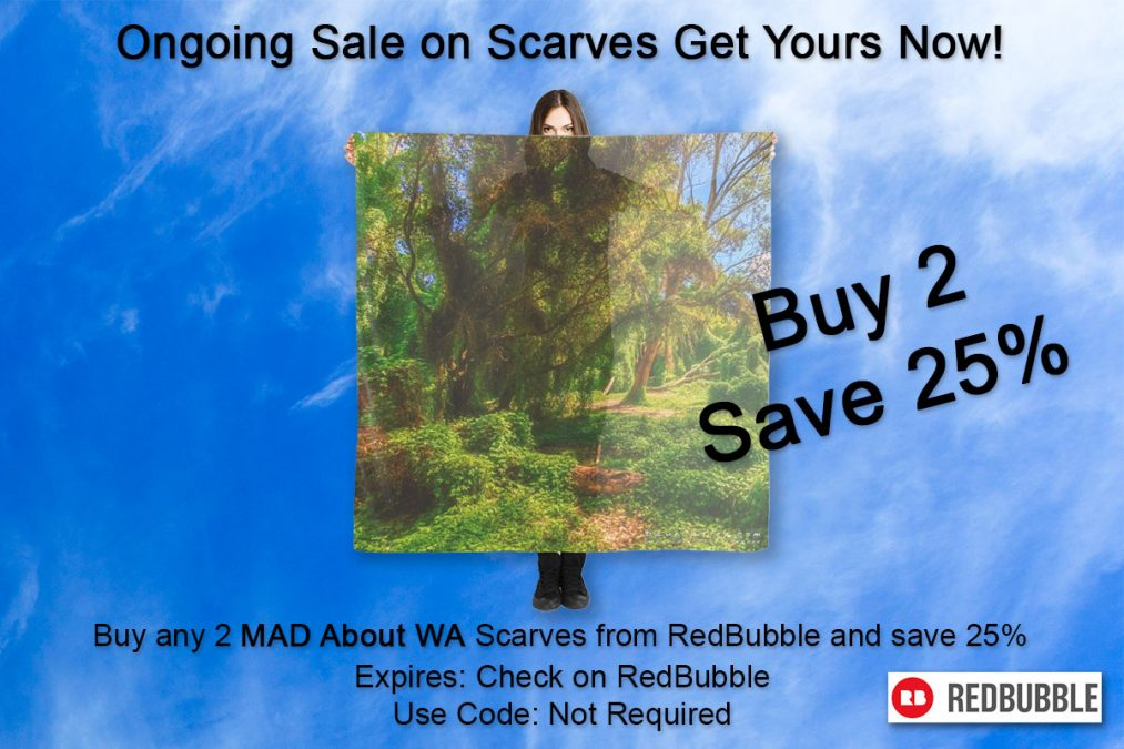 Ongoing Sale on Scarves Get Yours Now!