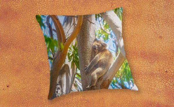 Love my tree, Yanchep National Park Throw Pillow design by Dave Catley featuring Koala Tree Hug available from our MADCAT.RedBubble.com store.