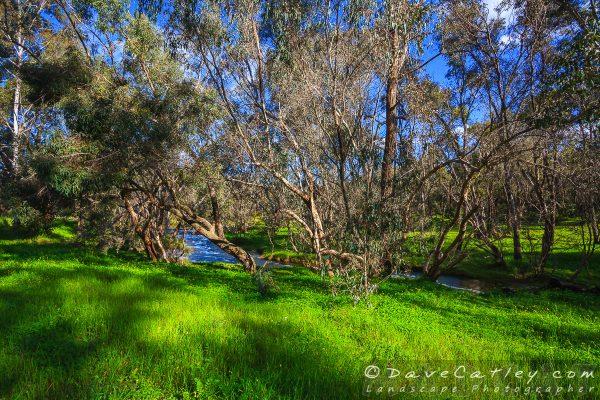 Lusciously Green, Noble Falls, Perth, Western Australia