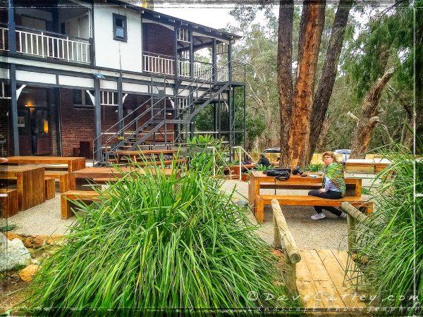 Maggie & Her Forest Scarf, Parkerville, Mundaring, Western Australia