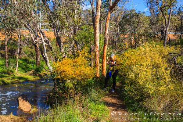 Maggie the Photographer, Noble Falls, Perth, Western Australia