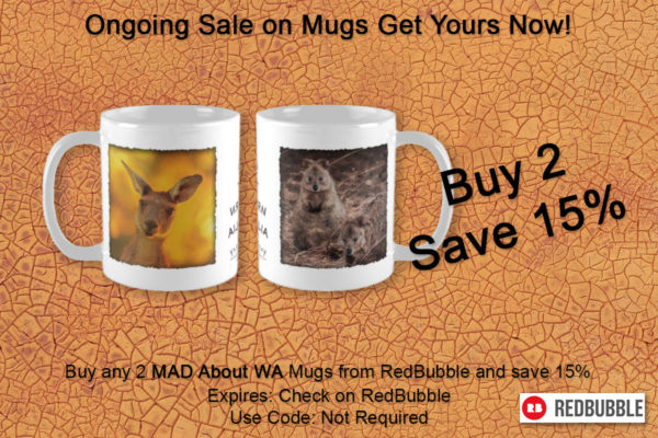 Ongoing sale on our Mugs, buy 2 get 15% off