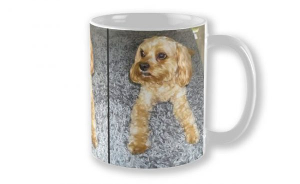 Personalised Mug featuring Doogle