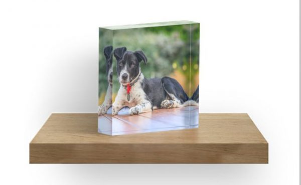 Personalised Gifts - Your Image on one of our products, the perfect personalised gift for someone special