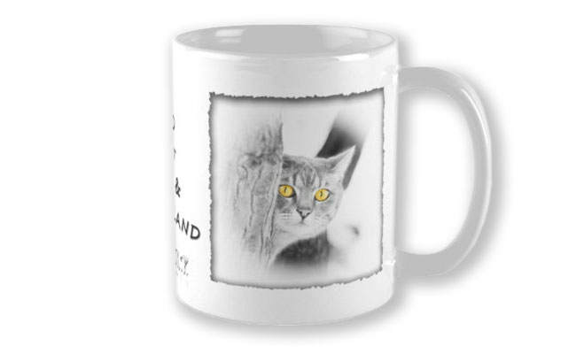 Personalised Mug of Mist the Cat