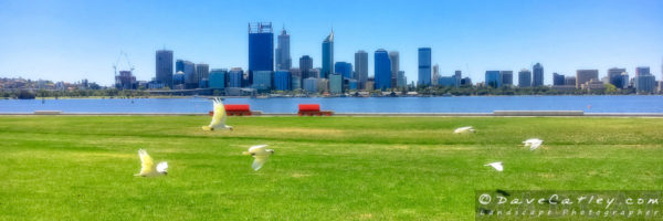 Perth City from South Perth, Western Australia