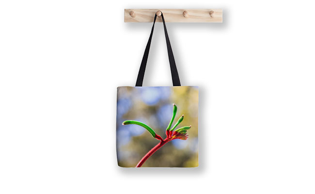 Red and Green Kangaroo Paw, Kings Park Tote Bag designed by Dave Catley, Fine Art Photographer, available from our MADAboutWA Store.