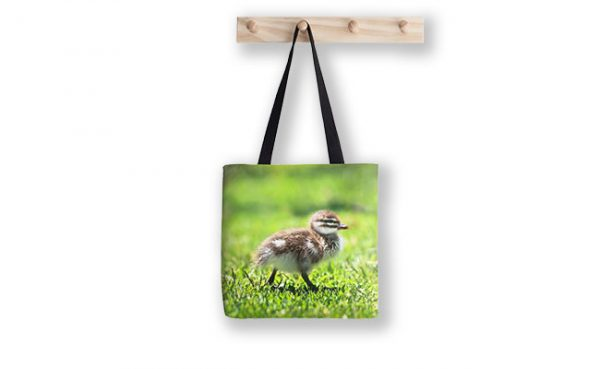 Rogue Duckling, Yanchep National Park Tote Bag design by Dave Catley featuring Ducklings mostly in a row, Yanchep National Park available from our MADCAT.RedBubble.com store.