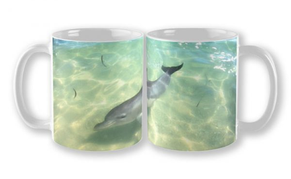 Samu 1 , Monkey Mia, Shark Bay Mug design by Dave Catley featuring Dolphin, Samu , Monkey Mia, Shark Bay available from our MADCAT.RedBubble.com store.
