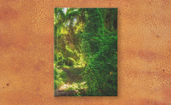 MAD About WA inspired Secret Garden Journal designed by Dave Catley and available on our MADCAT RedBubble store