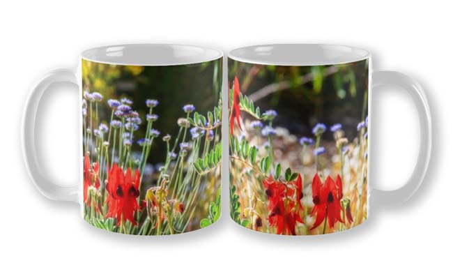 Sturt's Desert Pea, Kings Park, Perth Mug designed by Dave Catley, Fine Art Photographer, available in our MADAboutWA Store now.