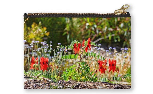 Sturt's Desert Pea, Kings Park, Perth Studio Pouch design by Dave Catley, Fine Art Photographer, available in our MADAboutWA Store.