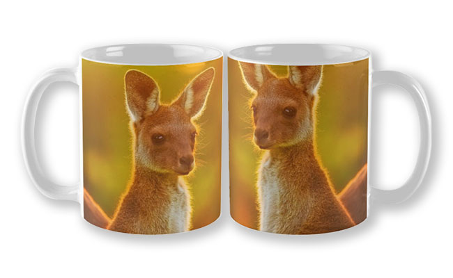 Sunset Joey, Yanchep National Park Mug design by Dave Catley featuring Alert Joey in the Yanchep National Park available from our MADAboutWA store.