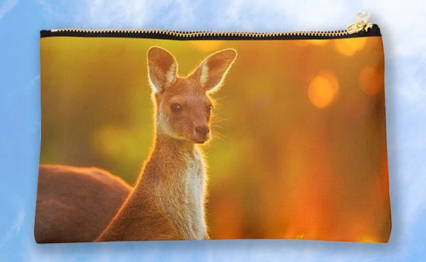 Sunset Joey, Yanchep National Park Studio Pouch design by Dave Catley featuring Alert Joey in the Yanchep National Park available from our MADAboutWA store.