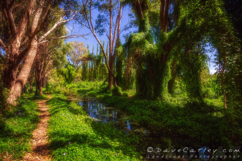 The Secret Garden, Gwelup, Perth, Western Australia