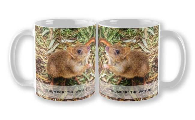 Thumper the Woylie, Native Animal Rescue Mug featuring Thumper the Woylie, Native Animal Rescue available from our MADAboutWA store.