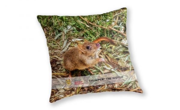 Thumper the Woylie, Native Animal Rescue Throw Pillow featuring Thumper the Woylie, Native Animal Rescue available from our MADCAT.RedBubble.com store.