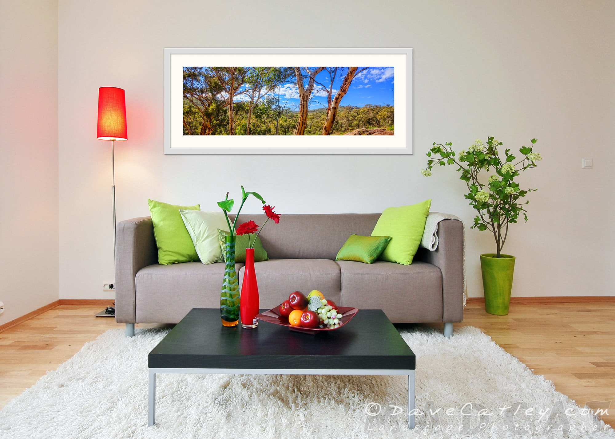 Turn Your Walls into Windows, John Forrest National Park, Perth - Western Australian Landscape Photography