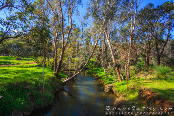 View North of the Bridge, Noble Falls, Perth, Western Australia