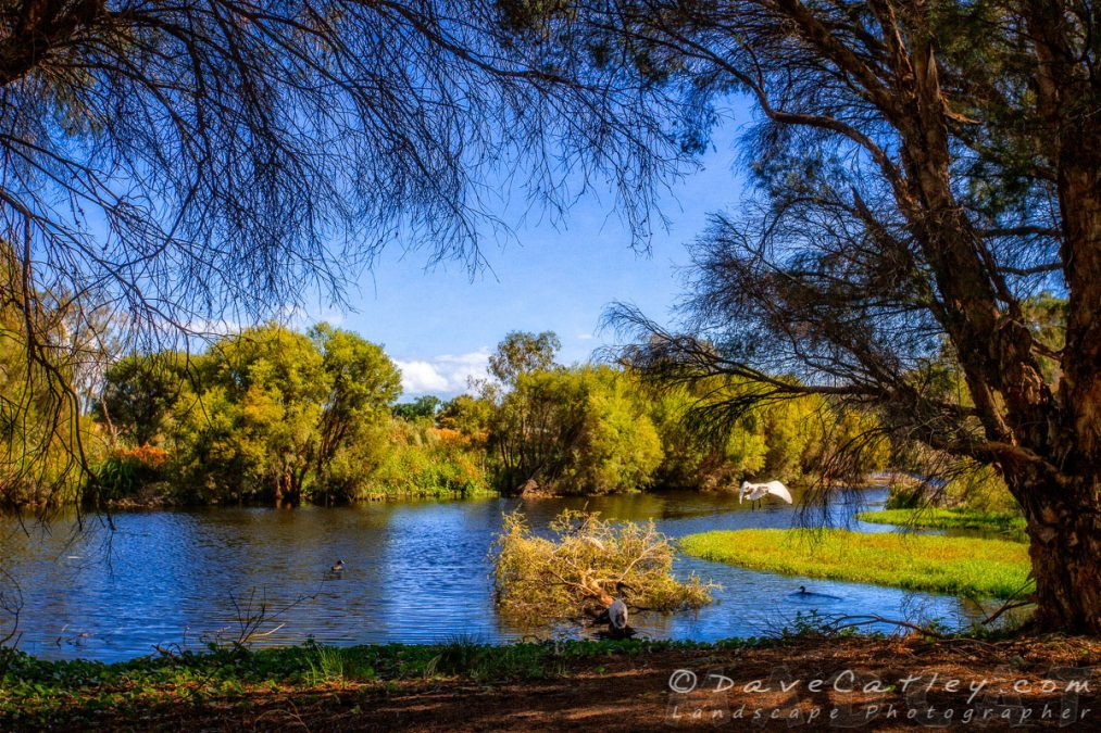 Perth's Not So Secret Garden – Part 2