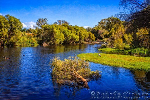 Wetland Lake, The Secret Garden Perth, Western Australia