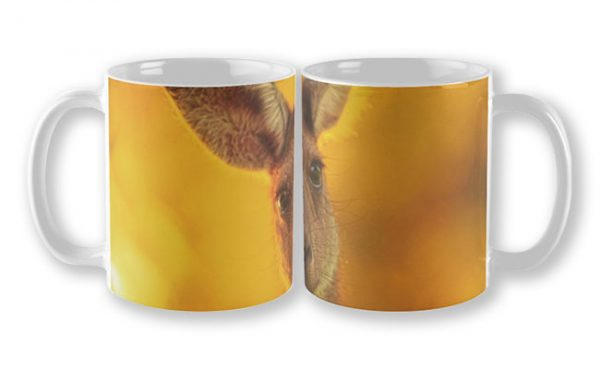 What's Up, Yanchep National Park Mug design by Dave Catley featuring Attentive Kangaroo, Yanchep National Park available from our MADAboutWA store.